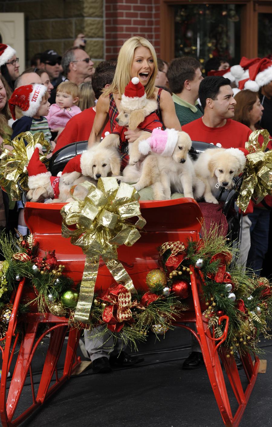 'Disney Parks Christmas Day Parade' Airs December 25 ...