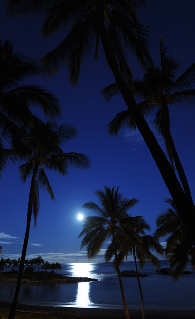 Moon Setting at Aulani, By: David Roark