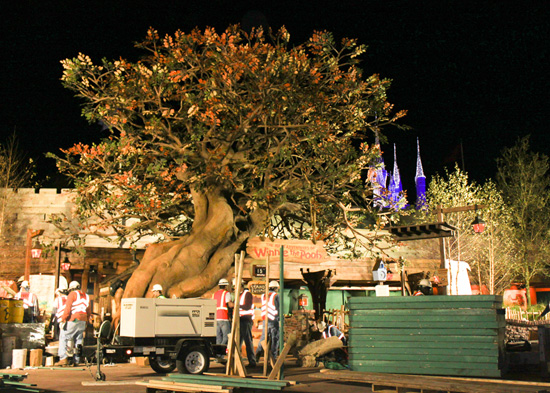Construction of The Many Adventures of Winnie the Pooh at Magic Kingdom