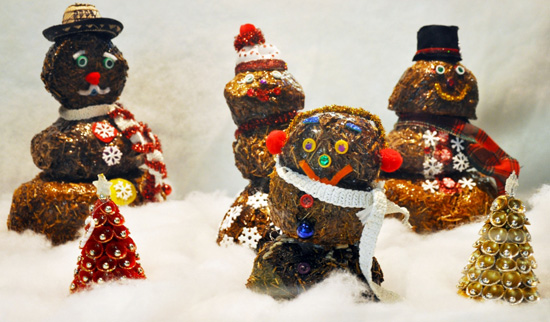 A Poop Snowman Family at the Wildlife Tracking Center at Rafiki's Planet Watch