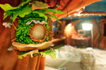 'Pixie Hollow' Aboard the Disney Dream