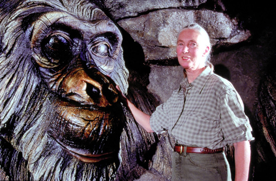Dr. Jane Goodall Visits a Carving of David Greybeard at the Tree of Life