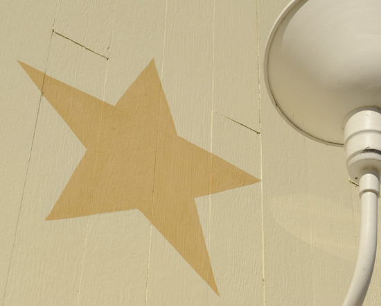 Where at Disney Parks Can You Find This Star?