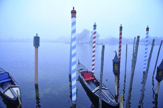 A Foggy Morning at Epcot