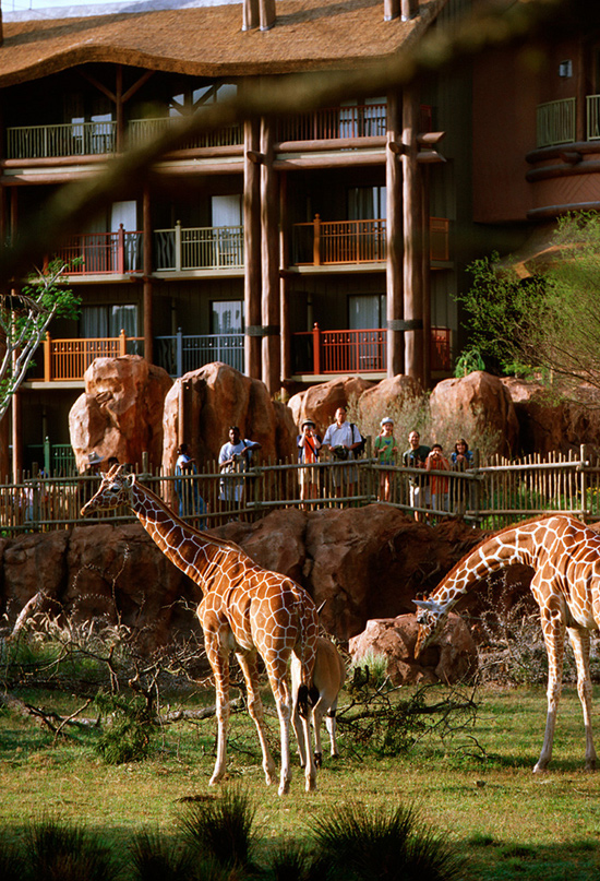 This Day In Disney History: Disneys Animal Kingdom Lodge Turns 10