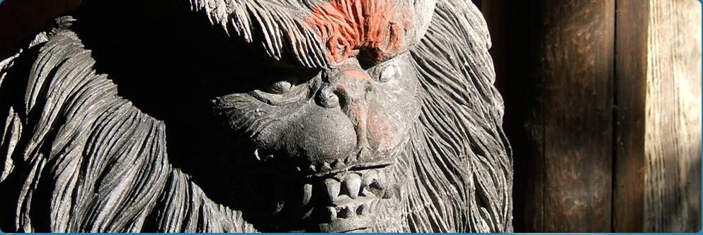 Expedition Everest at Disney's Animal Kingdom Park