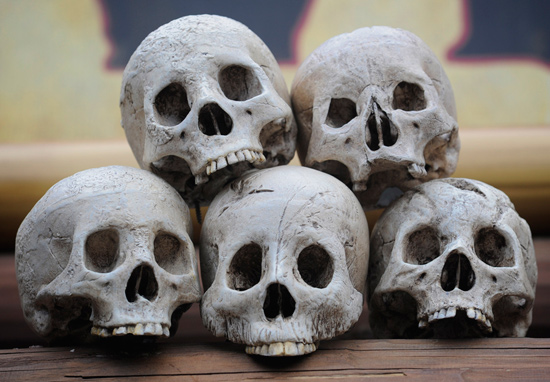 ARRRGGGGHHH, Where at Disney Parks Can Ye Be Findin' These Skulls?