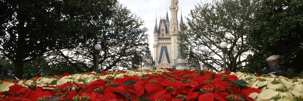 Happy Holidays from the Magic Kingdom Park at Walt Disney World Resort