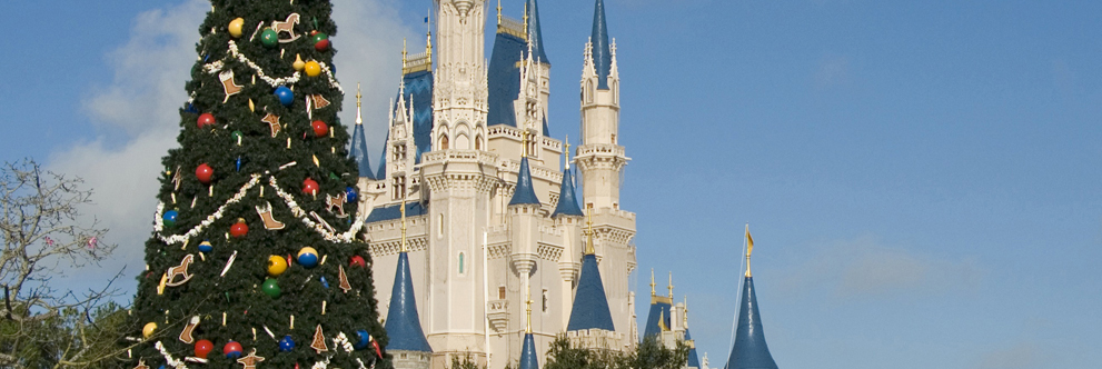 Cinderella Castle at Magic Kingdom Park During the Holidays
