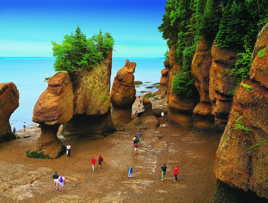 Experience Hopewell Rocks in Saint John, New Brunswick, with Disney Cruise Line's Port Adventures