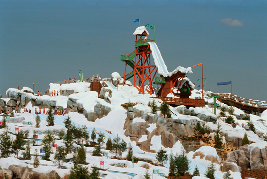  Summit Plummet at Disneys Blizzard Beach Water Park