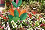 Haiti: Garden of Many Colors at Epcot