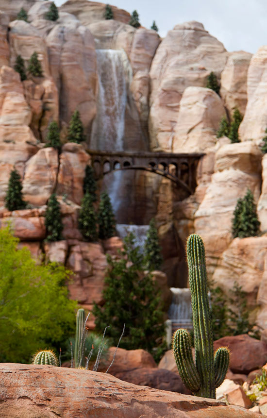 Cactus in the Valley of Cars Land at Disney California Adventure Park, By Paul Hiffmeyer
