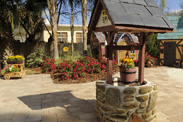Wishing Well in the Morales Family's Backyard - 'My Yard Goes Disney'