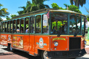 Disney Cruise Line Adventures in Key West, Featuring Trolley Tours