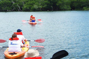Disney Cruise Line Adventures in Key West, Featuring Kayaking