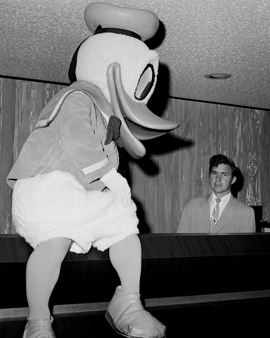 Caption This: Donald Duck Visits Disney's Contemporary Resort