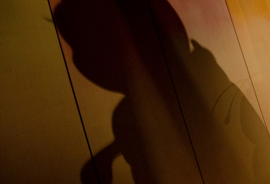Where at the Disneyland Resort Can You Find This Shadow?
