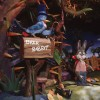 Splash Mountain at Magic Kingdom Park