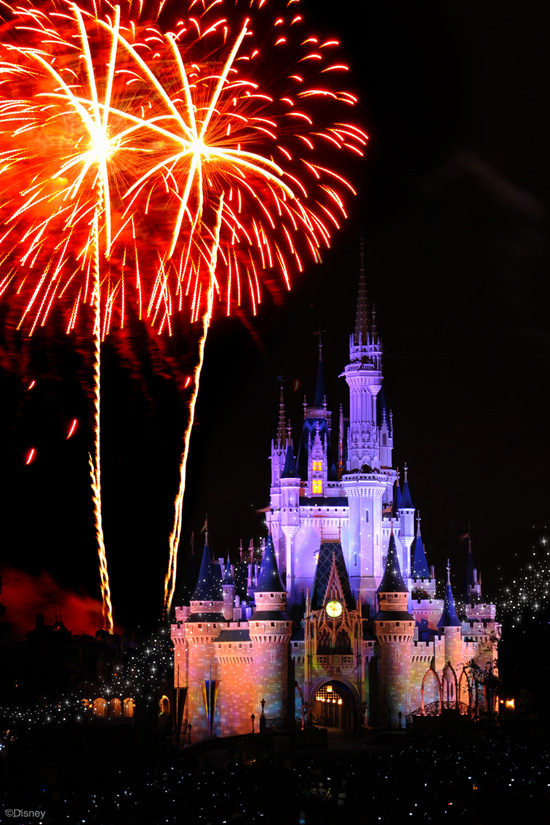 Your Wish-Come-True Disney Parks Engagement