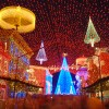 Disney Parks After Dark: A Canopy of Lights at Disney's Hollywood Studios