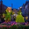 Disney Parks After Dark: Epcot International Flower & Garden Festival Blossoms at Night
