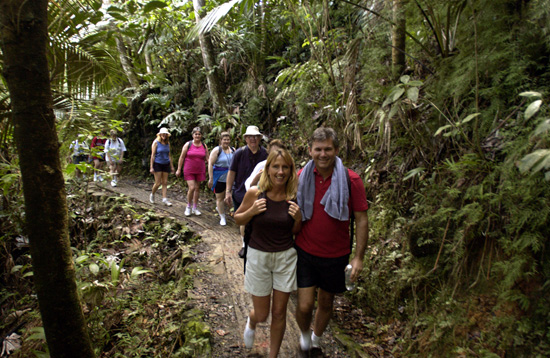 Visit El Yunque National Forest with Disney Cruise Line