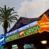 Disney Parks After Dark: Hollywood After Dark