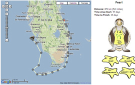Pearl's Tour de Turtles Map from Disney's Vero Beach Resort