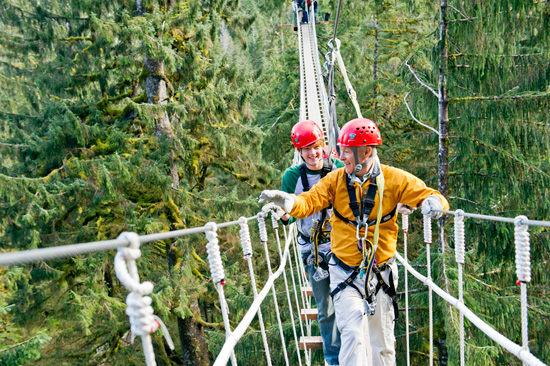 Venture to the Rainforest for a Thrilling Zip-Lining or Sky Bridge Adventure With Adventures by Disney Experiences on a Disney Cruise to Alaska