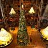 Disney&#8217;s Wilderness Lodge