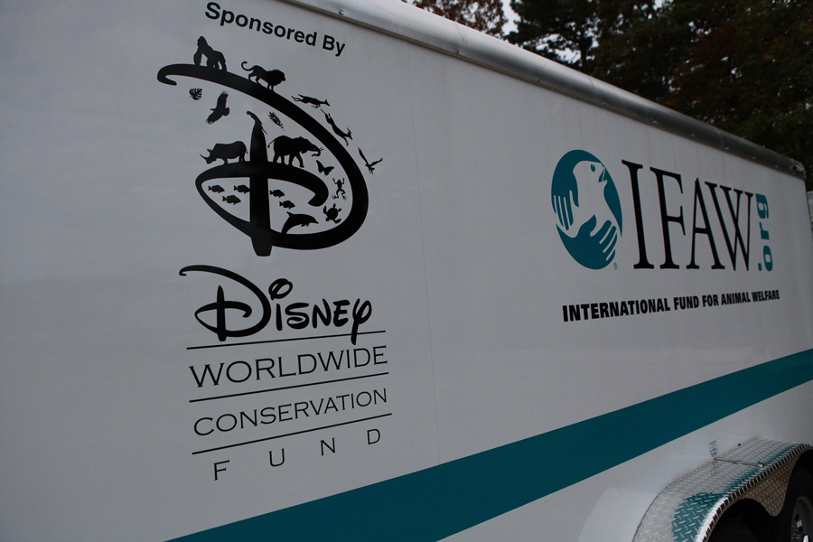 Wildlife Wednesdays: Disney Worldwide Conservation Fund Helps ...