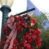 Take a Look Inside Disney's Hollywood Studios for the Holidays