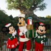 Disney's Animal Kingdom – Holidays at Walt Disney World Resort