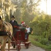 Disney's Fort Wilderness Resort and Campground – Holidays at Walt Disney World Resort