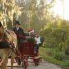 Disney's Fort Wilderness Resort and Campground – Holidays at Walt Disney World Resort
