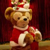 Duffy the Disney Bear – Holidays at Walt Disney World Resort