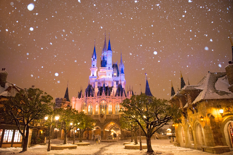 Disneyland Winter
