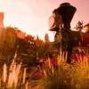 Disney Parks Big Thunder Mountain Railroad