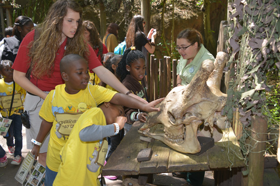 Wildlife Wednesdays: Central Florida Kids Experience Natural 'Magic' During Special Spring Camp at Walt Disney World Resort