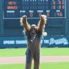 This Year Saw the Introduction of the First Themed Games of Braves at Disney. The Special Event Saw the Arrival of Chewbacca and Darth Vader