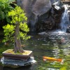 Travel to Japan – No Passport Needed at Japan Pavilion inside Epcot