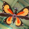 Butterflies And Other Playful Animals Fill the Sky Inside Island Mercantile at Disneys Animal Kingdom Theme Park