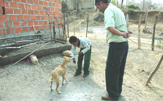 Disneys Animal Care Team Promotes Dog Training in Colombia