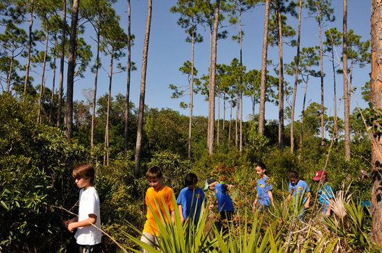 Wildlife Wednesdays: Disney Helps 60,000 Students Explore Americas National Parks