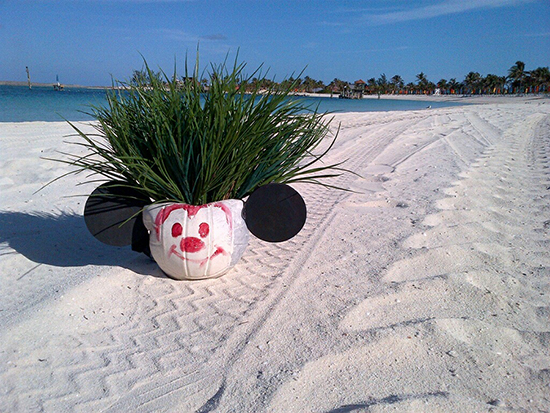 Private Island for a Day at Disney's Castaway Cay