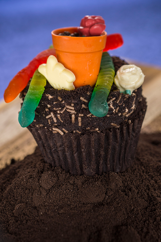 Chocolate Worms & Dirt Cupcake Topped with a Teensy Flower Pot and Gummy Worms