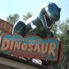 Dinosaurs Say Good Buy at Chester and Hesters Dinosaur Treasures in Dinoland, U.S.A. at Disneys Animal Kingdom