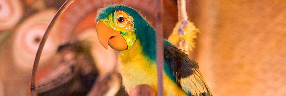 50th Anniversary of Walt Disney's Enchanted Tiki Room