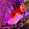 """Tiki-rific"" Time at 50th Anniversary Event for Walt Disney's Enchanted Tiki Room at Disneyland Resort"